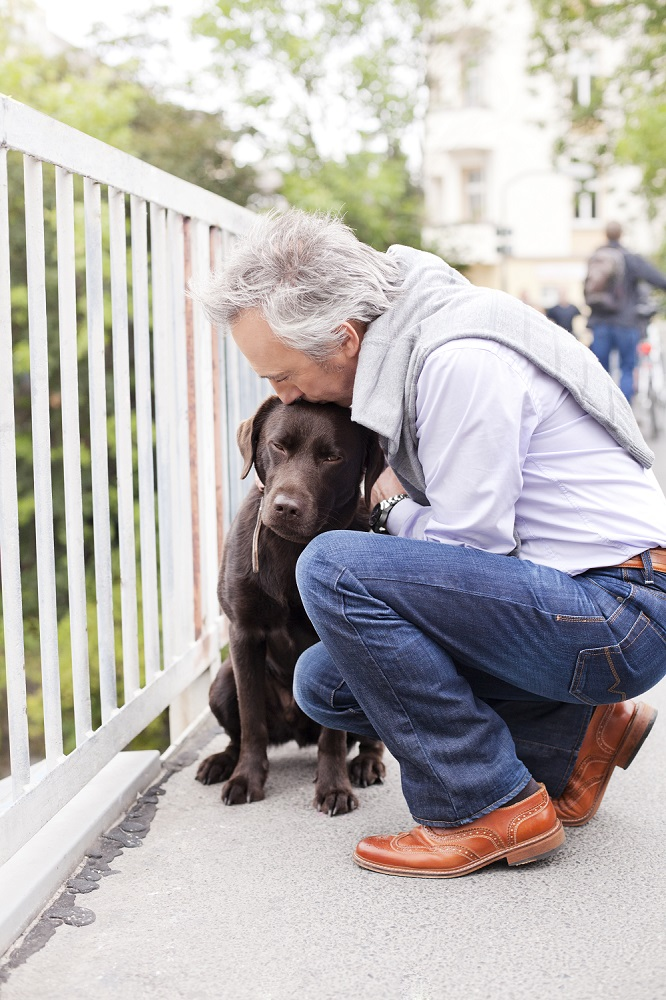 Hospice care for pets